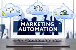 Marketing Automation Management